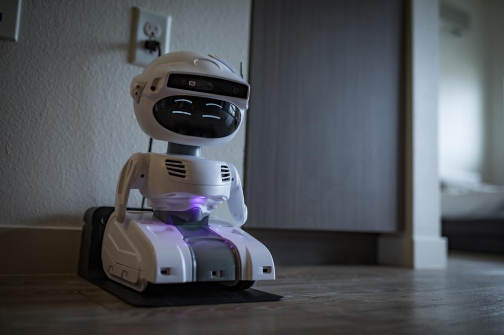 Misty robot amarrado
